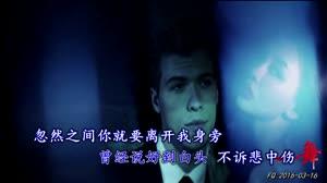 流泪的两只鹅(Mix)DJ Candy赵真Avi_DJ视频美女热舞视频