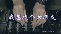 我想找一个女朋友 DJ辉总 夜店美女车载dj视频酒吧现场