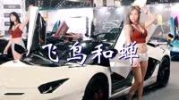 飞鸟和蝉 dj麻子 美女车模汽车音乐视频
