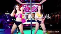 流泪的两只鹅 车载音乐精品美女热舞DJ视频