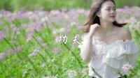 功夫 DJ沈念版 美女写真车载dj视频