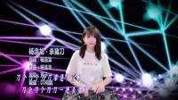 杀猪刀 DJ何鹏版 DJ芳子美女打碟现场视频