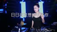 日日夜夜想的都是你 DJPW版 DJ美女打碟现场视频